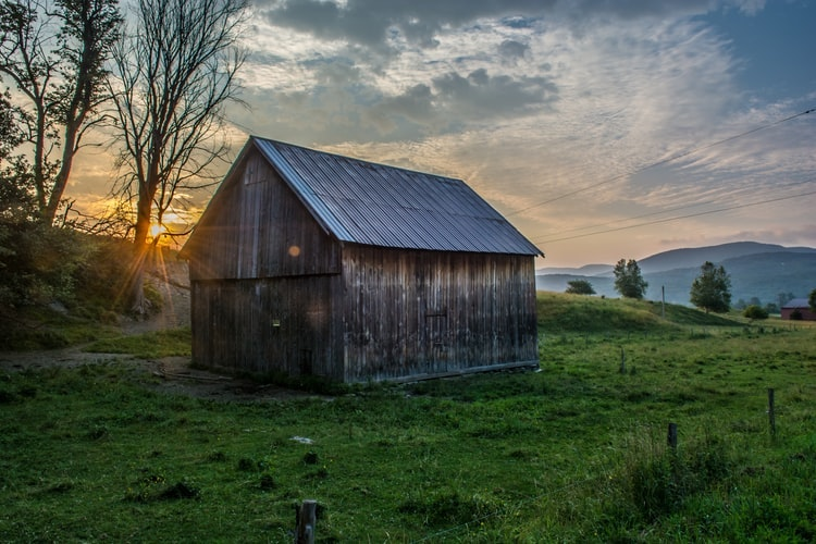 Building Your Own Shed